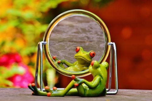 frog mirror mirror image
