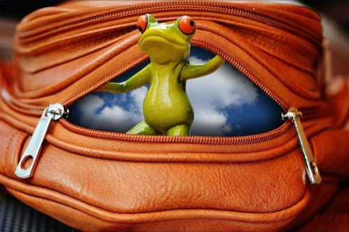 frog bag zip