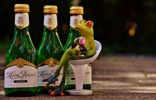 frog wine drink
