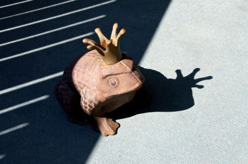 frog shadow crown