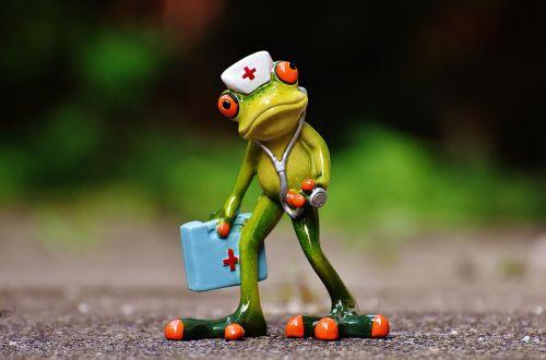 frog figure nurse