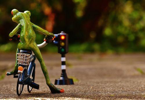 frog figure bike