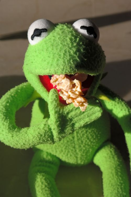 frog kermit cookie