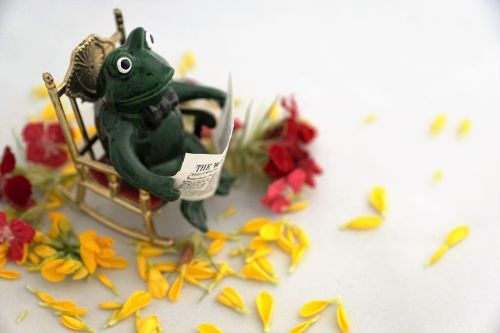 frog read newspaper