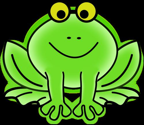 frog frog eyes toad