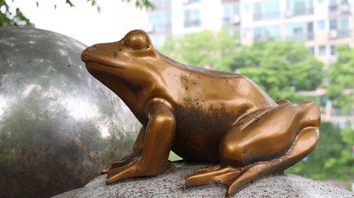 frog  sculpture  amphibians