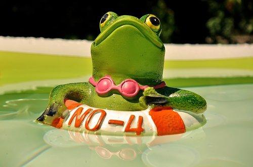 frog  figure  swim