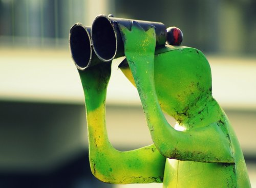 frog  binoculars  green