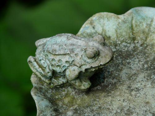frog animal ornament
