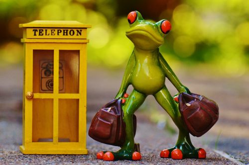 frog phone travel