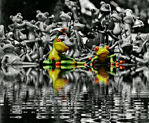 frogs many group
