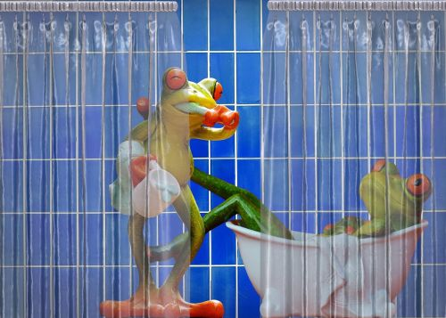 frogs bathroom funny