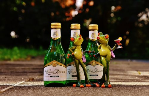 frogs wine drink