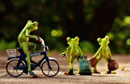 frogs farewell bike