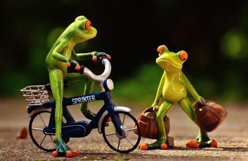 frogs arrive bike