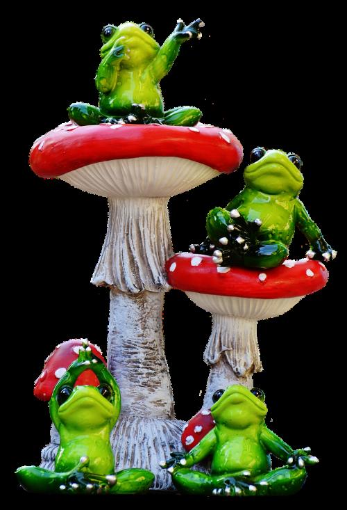 frogs funny mushrooms