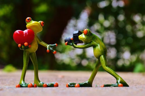 frogs love valentine's day