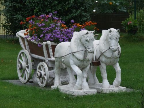 front yard flowers coach