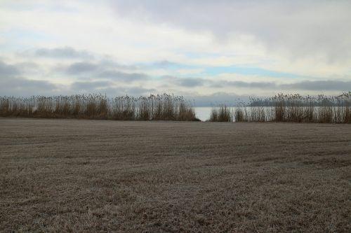 frost hoarfrost mood