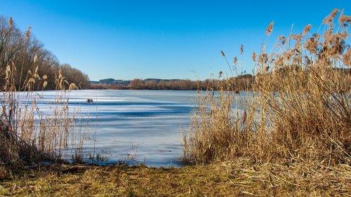 frozen lake  winter  cold