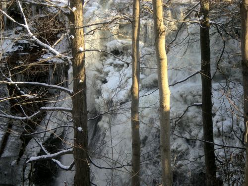 Frozen Waterfall Through Trees