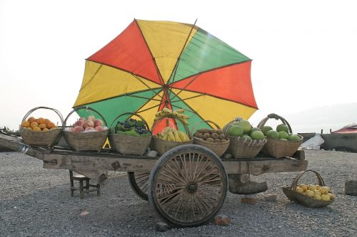 fruit dare parasol