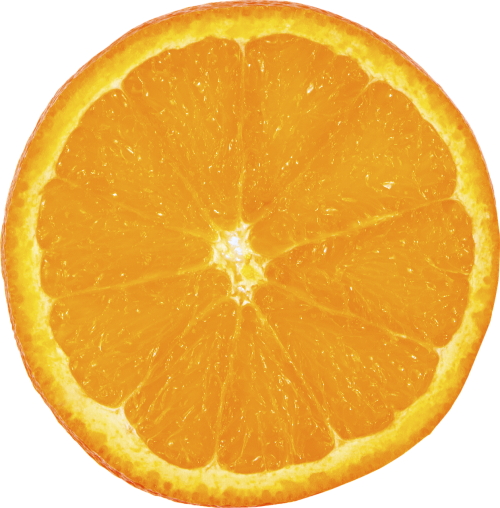 fruit orange slice