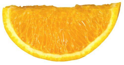 fruit orange orange slice