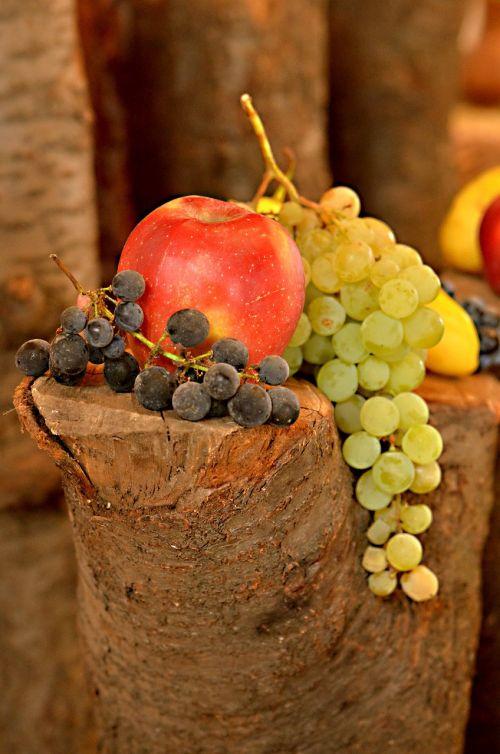 fruit blessing crop