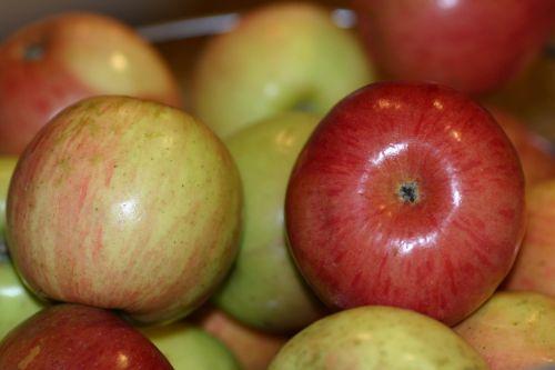 fruit apple healthy