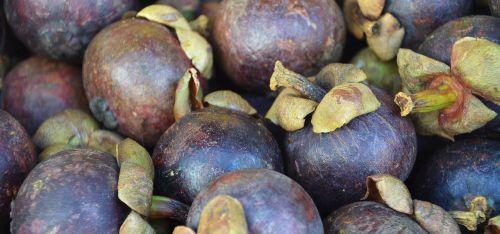 fruit plum market