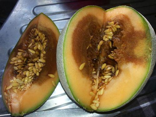 fruit rotten melon