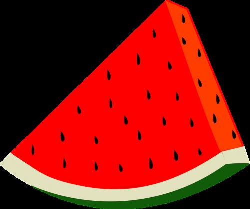 fruit harvest slice