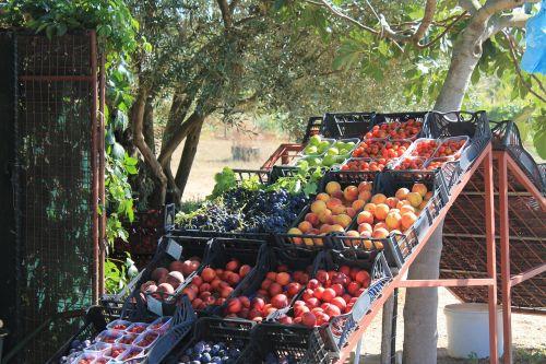 fruit fruit stand market