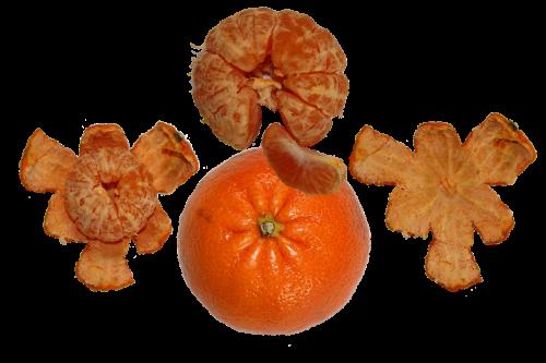fruit tangerine orange