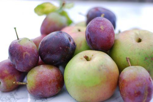 fruit food juicy