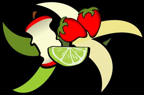 fruit apple core apple