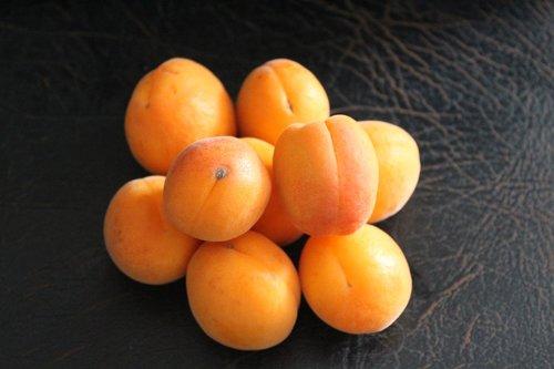 fruit  apricots  mediterranean