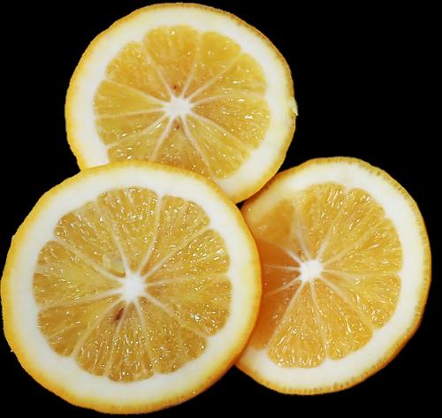 fruit  lemon  slices
