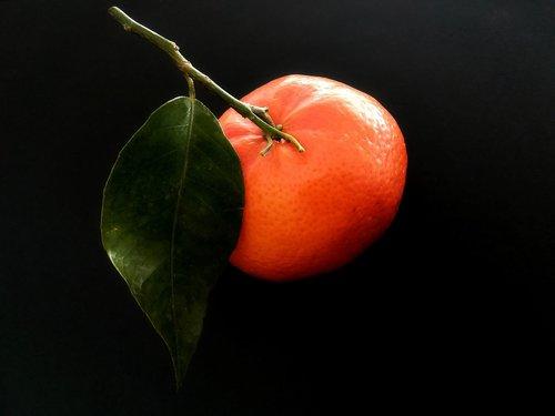 fruit  clementine  citrus