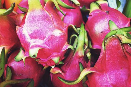 fruit,pink,dragon fruit,food,fresh,sweet,delicious,healthy,organic,diet,nutrition,eating,vitamin,colorful,tasty,tropical,vegetarian,ripe