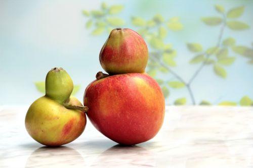 fruit apple gene defect