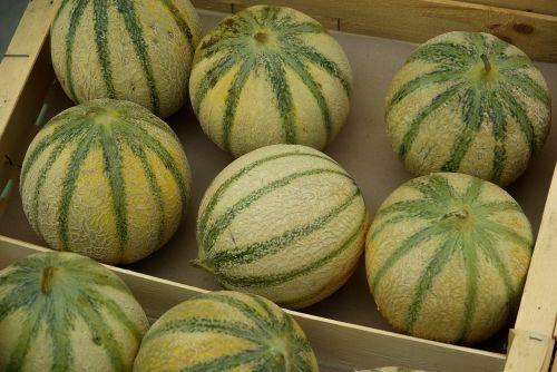 fruit market melons