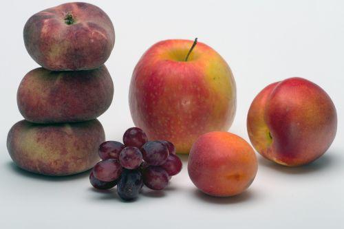 fruit still life apple
