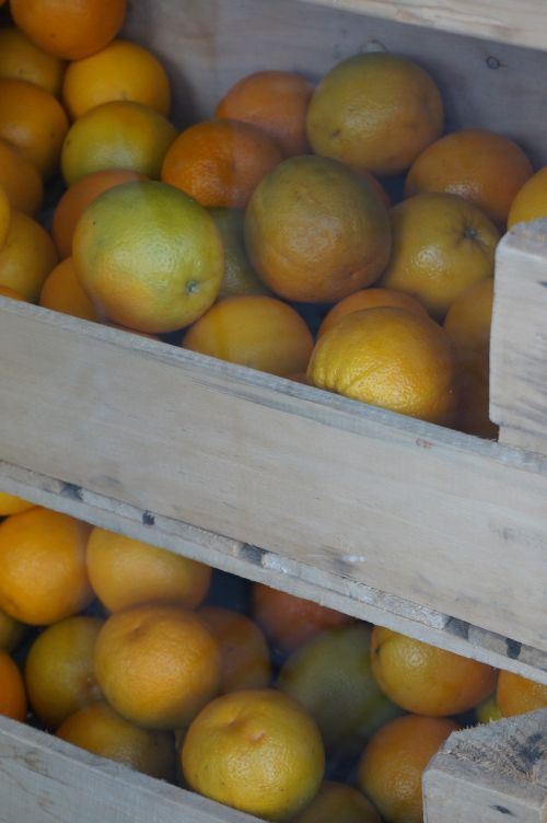 fruit orange healthy