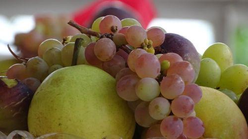 fruit grapes apple