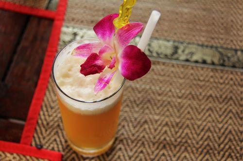 fruit juice juice drink