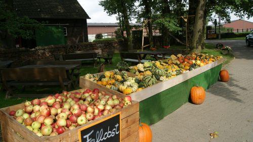 vaisių stovykla,obuolys,gatvių prekyba,gatvės stovykla,daržovių stendas,ruduo,Halloween,moliūgai