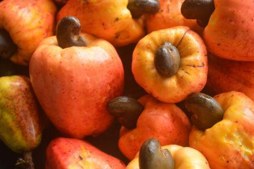 fruits cashew apple food