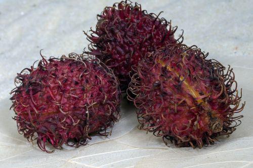 fruits rambutan fruity